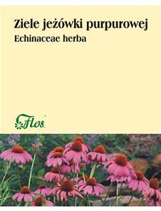 Jeżówka purpurowa ziele