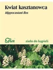 Kasztanowiec kwiat