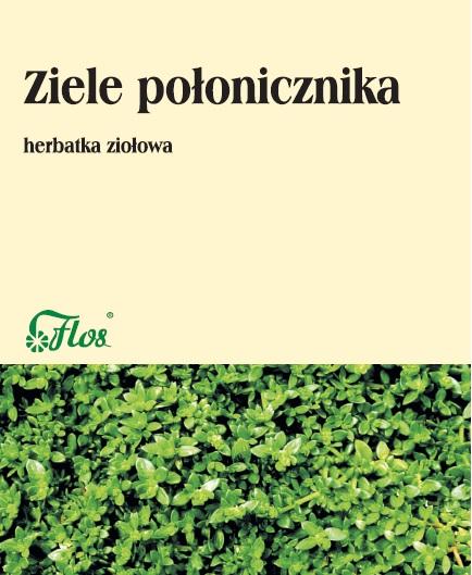 Połonicznik ziele herbatka ziołowa
